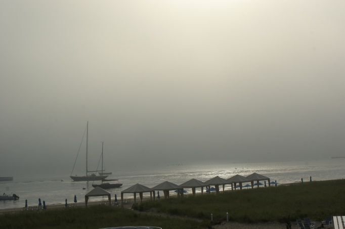 Waiting for the fog to lift, literally and figuratively.