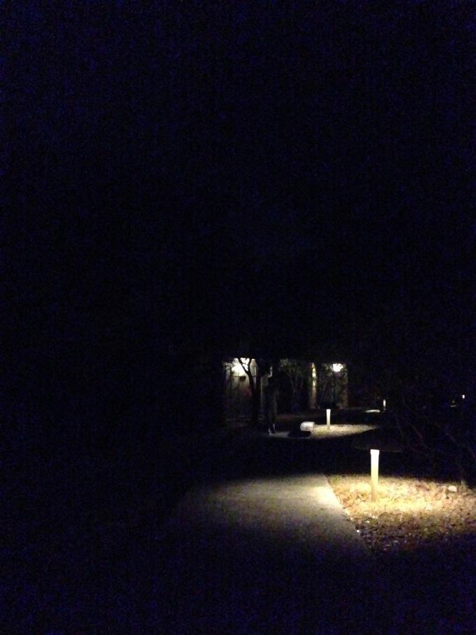 A walk in stony silence